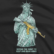 DEFEND THE RIGHT TO KEEP AND BEAR ARMS AK-LIBERTY